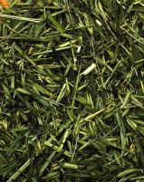 JR Farm Zelený oves 100 g