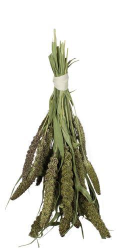 JR Farm Zelené senegalské proso 50 g