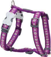 Postroj RD Daisy Chain Purple