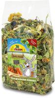 JR Farm Zakrslý králík Feast 1,2 kg